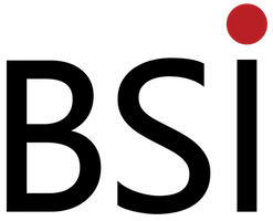 BSI-New-Logo-Transparent